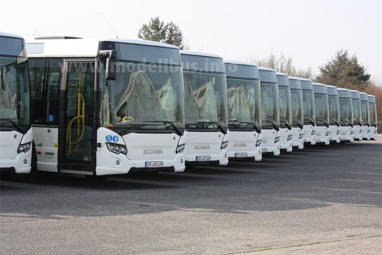 Feierliche Übergabe von 25 Scania Citywide an die BRH ViaBus GmbH.
