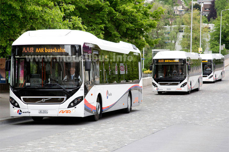 Die 12 m lange Diesel- Hybridbusvariante des Volvo 7900 im Einsatz bei der ÖPNV-Betreibergesellschaft  AAR bus+bahn in Aarau (Schweiz) und die 18 m lange Diesel-Hybrid-Gelenkbusvariante des Volvo 7900 im Einsatz bei der Hamburger Hochbahn AG in Hamburg.