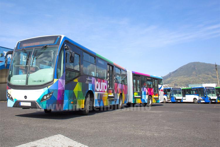 In Lateinamerika weiter auf Erfolgskurs: Daimler Buses.