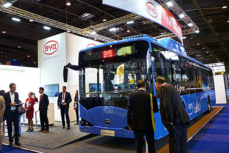 BYD Elektrobus Europa