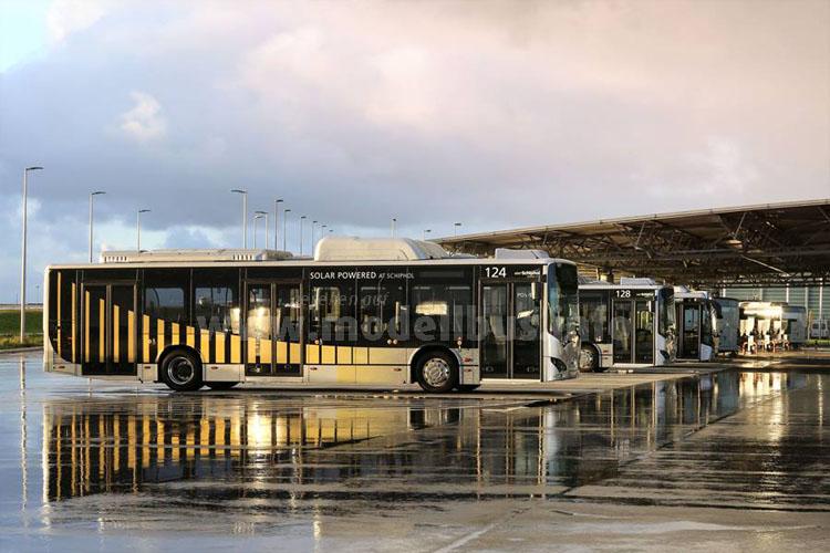 Ein Teil der BYD-Elektrobusflotte auf dem Flughafen in Amsterdam.