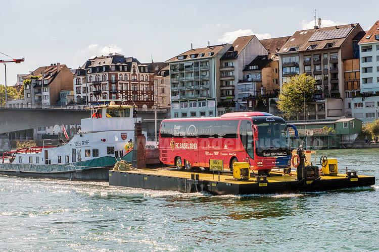 Auf dem Rhein Bus fahren?