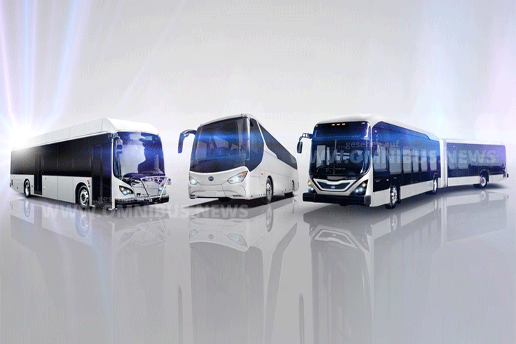 BYD Großauftrag Elektrobusse