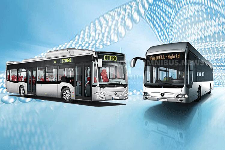 Auf der IAA als Messeshuttle im einsatz: Ein Citaro NGT und FuelCell. Grafik: Daimler