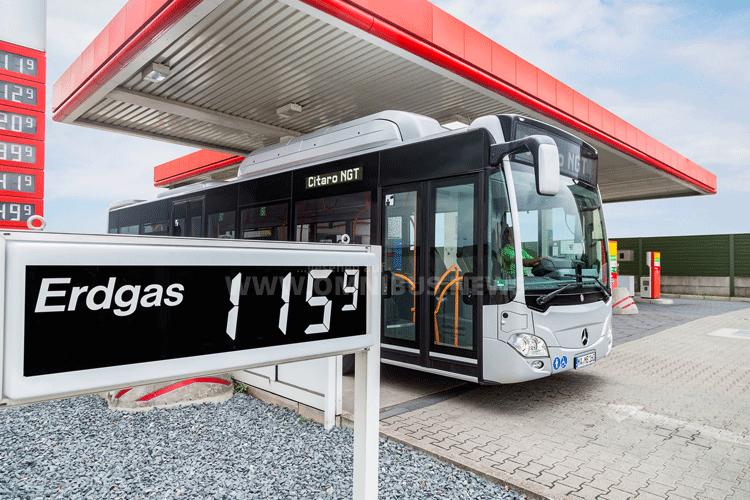 Erdgasbusse gewinnen