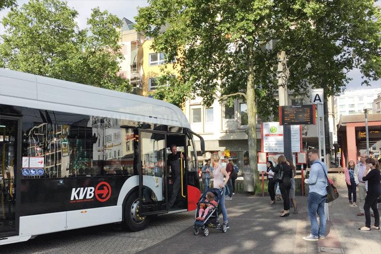 50 neue E-Busse