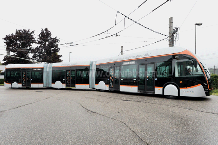 XXL-O-Bus