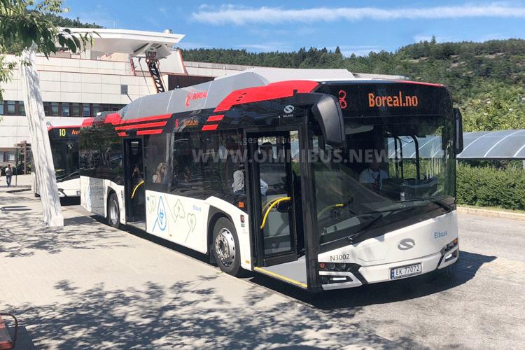 Boreal Buss stromert
