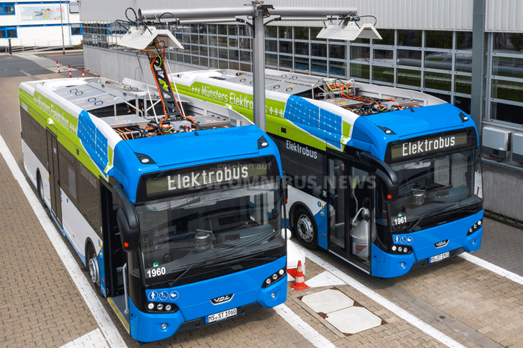 Zwölf E-Busse in Münster