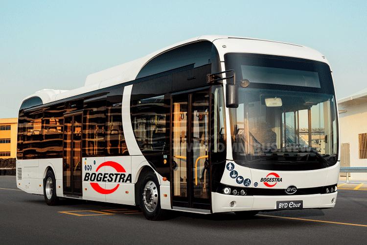 BYD-E-Busse für Bogestra