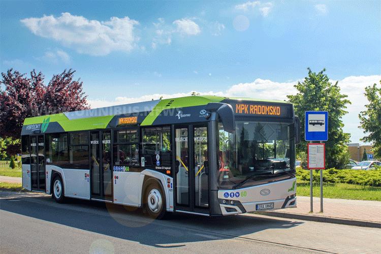 Elf Hybride für Satu Mare