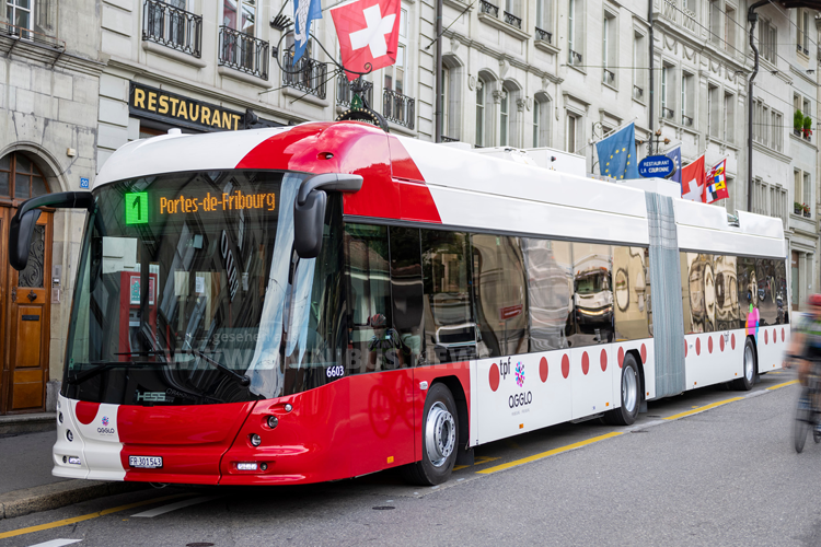 Neue Duo-O-Busse für TPF